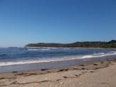 Walking along Shelly Beach
