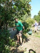 Brigáda v Obecnej záhrade