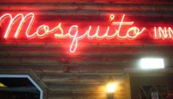 Mosquito Inn