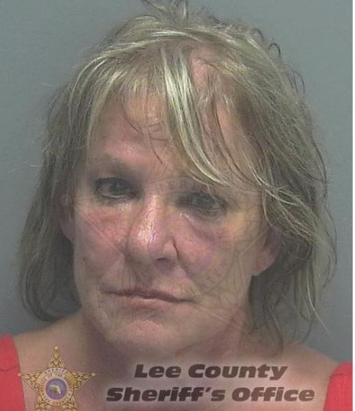 Linda Sue LaRoche, Racine, Wisconsin, Town of Raymond