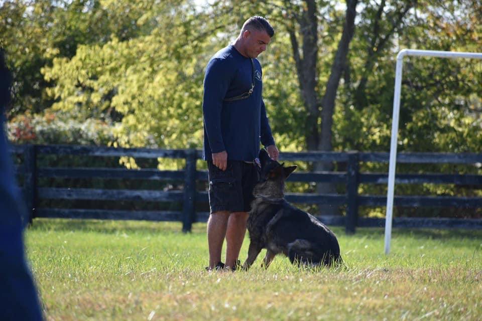 Business Spotlight Canine Coach and Wellness