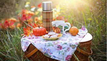 tempo racine annual picnic