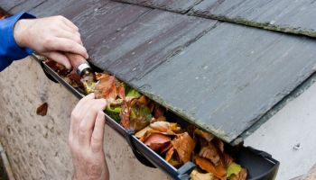 Ways To Prevent Roof Leaks in Your Home