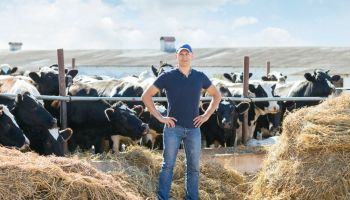 Ways Dairy Farmers Can Increase Profits