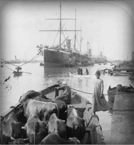 Ship, 1890.