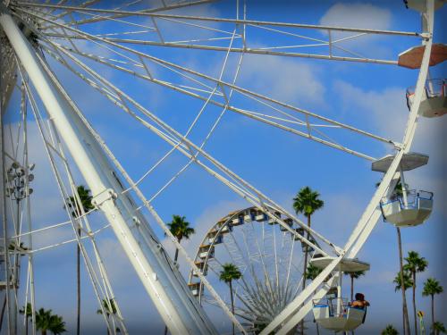 Ferris Wheels, Los Angeles County Fair, 2016. Image: Bee Rose.