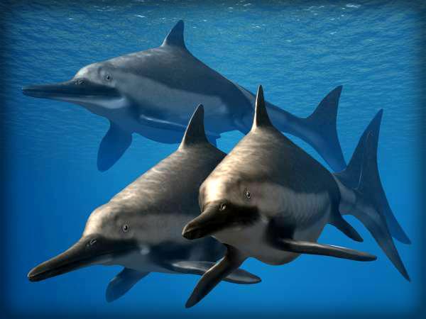 Ichthyosaurus Life Reconstruction. Image: Nobu Tamura.
