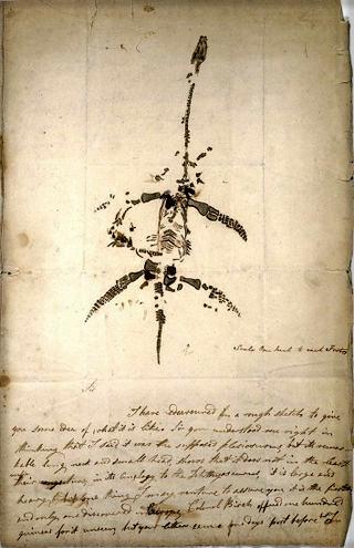 Mary Anning Plesiosaurus: Dec. 26, 1823.