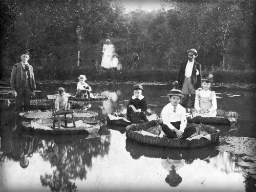 Children and adults in 1900s clothing standing on giant water lily leaves.
