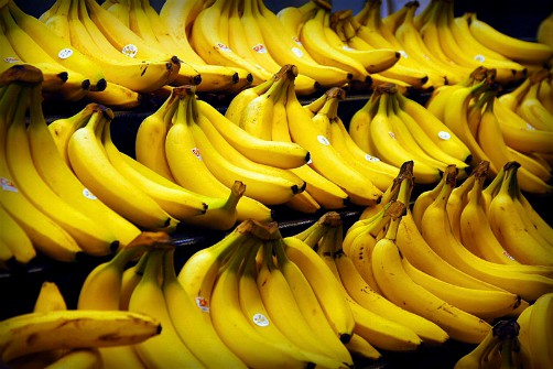 Joseph Paxton, Bananas. Image: Steve Hopson; Wikipedia.