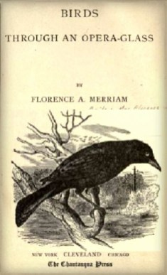 Birds Through An Opera Glass by Florence A. Merriam. Image: Google books.