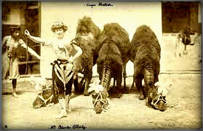 Cirque Franco-Arabe, 1897. Image: Wikipedia.
