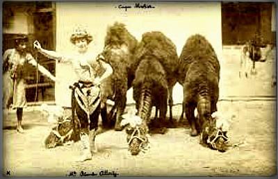 Cirque Franco-Arabe, 1897. Image: Wikipedia.