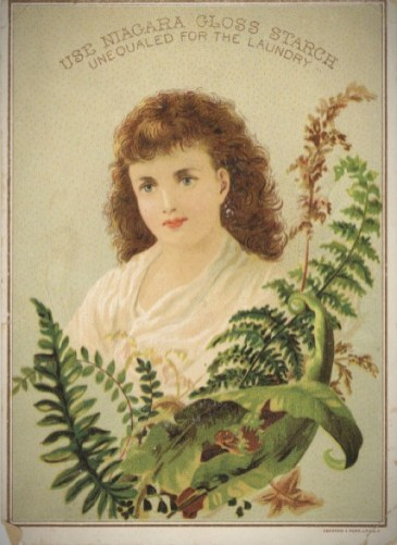 Fern In Victorian Advertising. Image: Wikipedia.