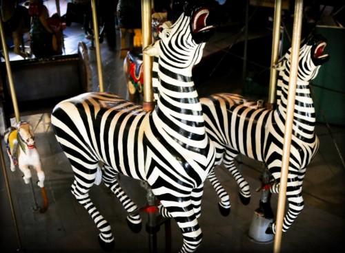 Balboa Park Carousel, Zebra. Image: Friends of Balboa Park.