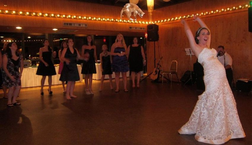 Brides-throwing-cats