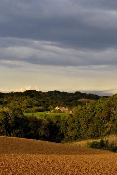 Campo Magro - paisagem rural