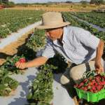 Iniciativa aprovada por exportadores é recebida com preocupação pela agricultura familiar - Foto: Agência Brasil