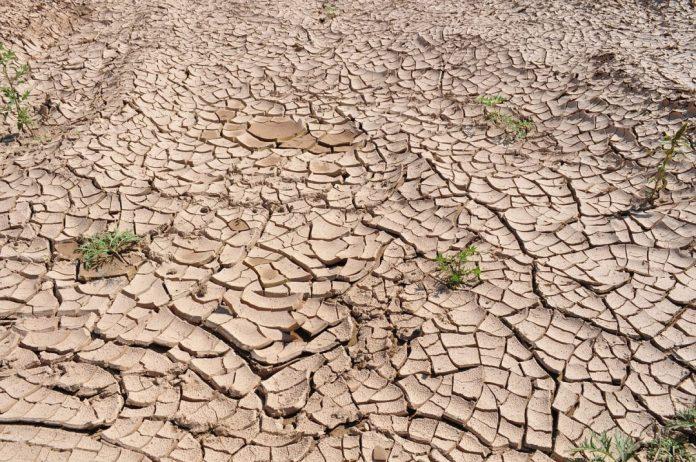 """As graves ameaças ao nosso clima são responsáveis por todos os principais riscos de longo prazo do Relatório Global de Riscos, com """"confrontos econômicos"""" e """"polarização política doméstica"""" reconhecidos como riscos significativos de curto prazo em 2020. Foto: Pixabay"""