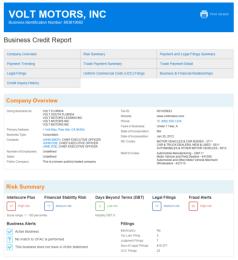 BizStanding Business Background Report Sample