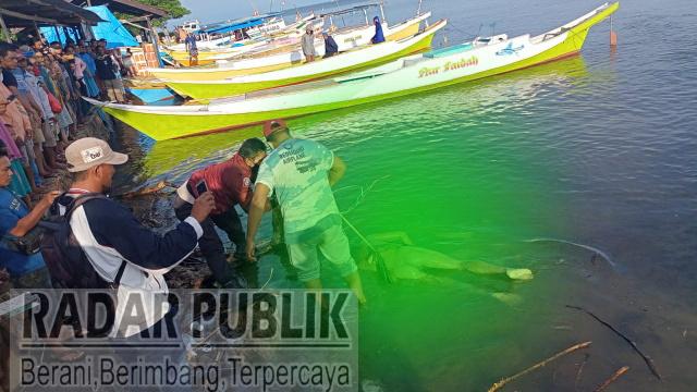 Mayat Tanpa Identitas ditemukan Nelayan Mengapung Di Lautan