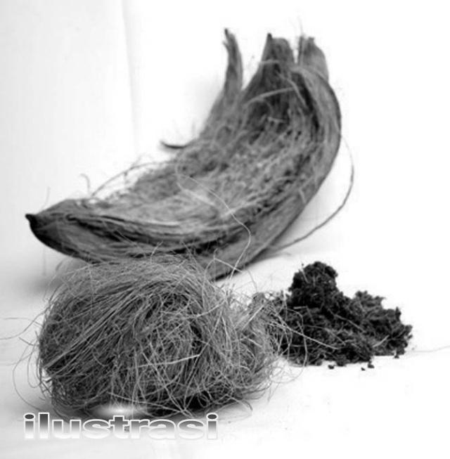 Warga Tulungrejo Tolak Keras Beroperasinya Pabrik Serabut Kelapa…. Ada Apa??