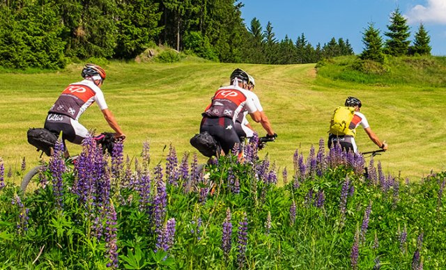 Gruppe von Mountainbikern.