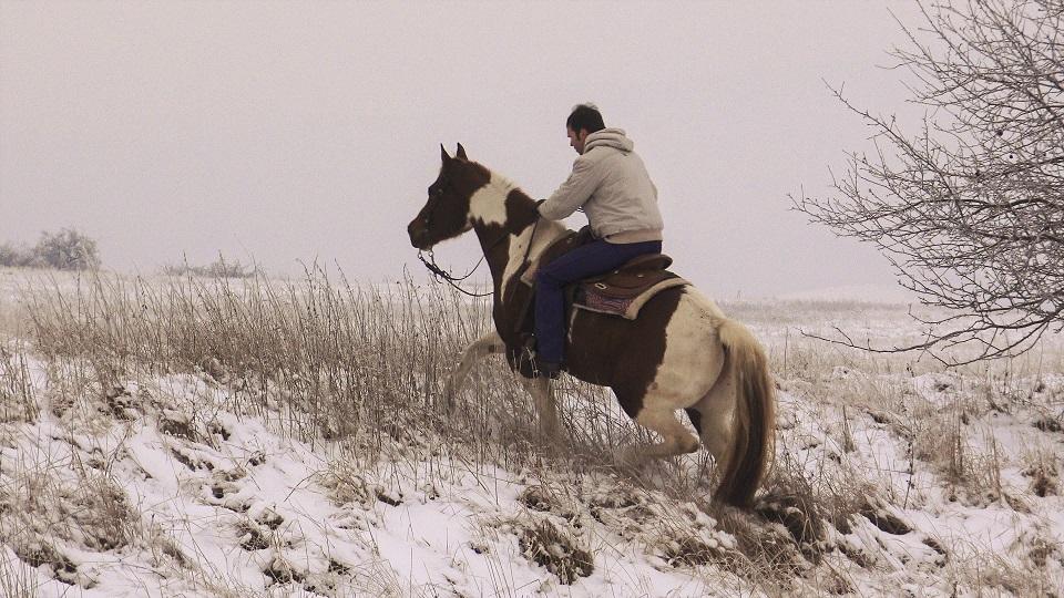 Utíká s vámi kůň na vyjížďce?