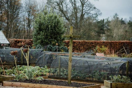 Kitchen gardens at Askham Hall