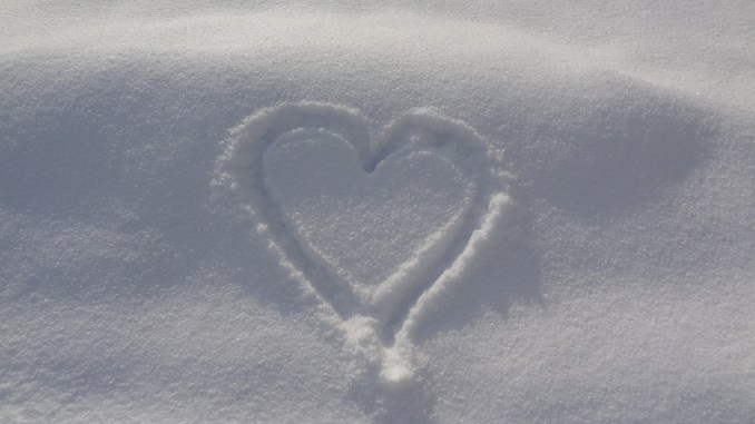 Snow On First Day Of Spring Makes Me >> In Love With The Snow Radiance With Rosa Let Your Whole Life Shine