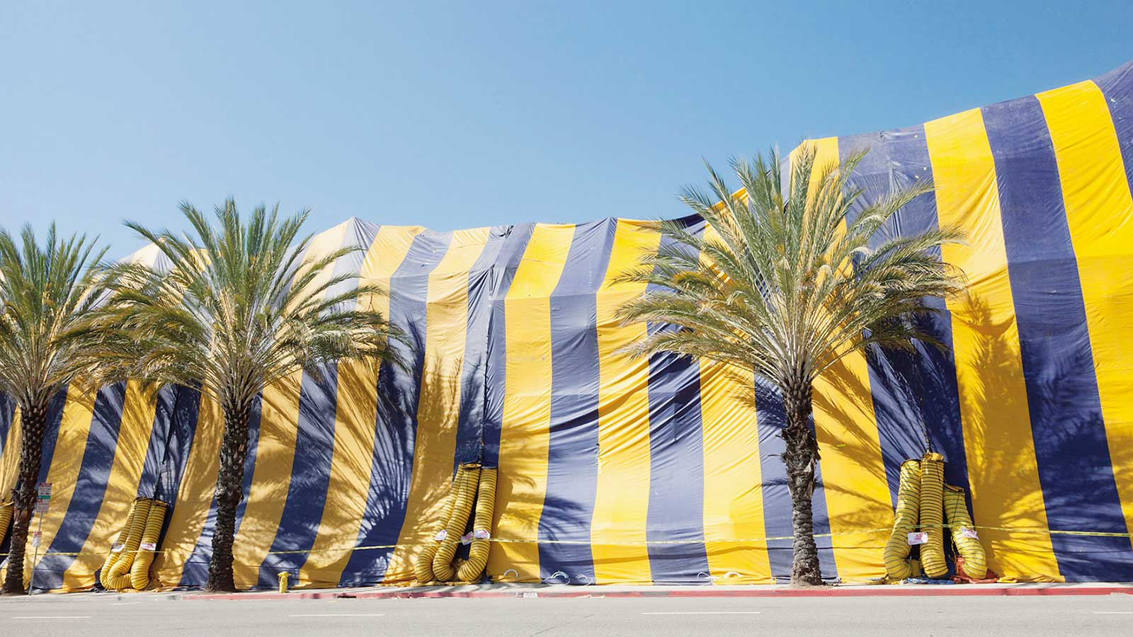 Radiant Circus Screen Guide - Films in London this week: TARPAULINS at DocHouse.