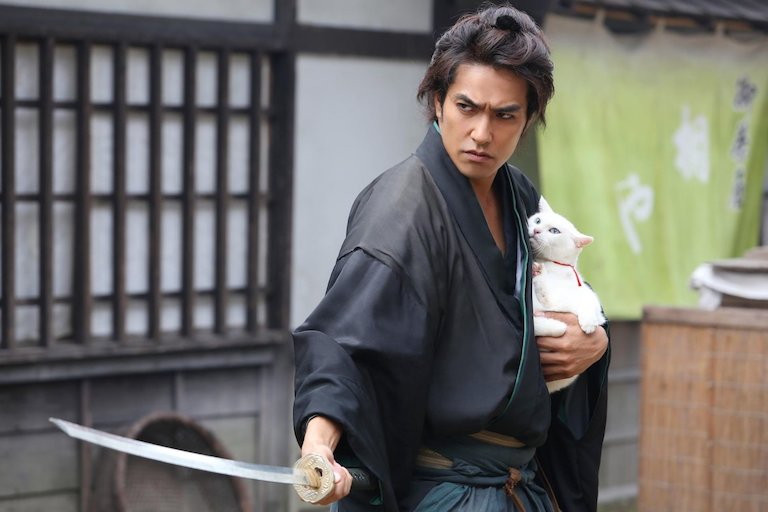 THE CAT SAMURAI