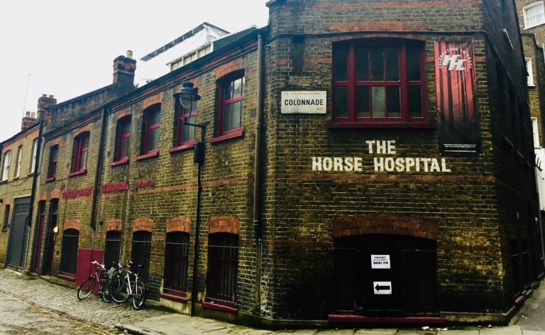 Films in London this week: THE HORSE HOSPITAL.