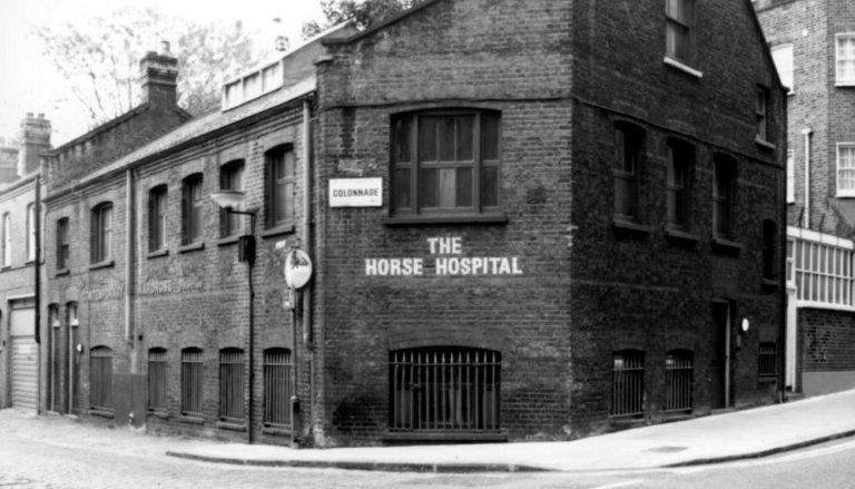 KICKSTARTER: Stop The Horse Hospital Closing!