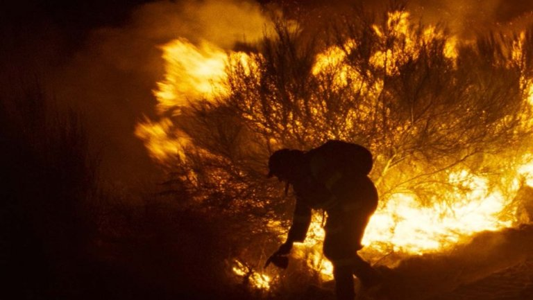 RADIANT CIRCUS #ScreenGuide - Films in London today: FIRE WILL COME, part of BFI London Film Festival at BFI IMAX (07 OCT).