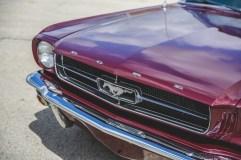 @1964 Mustang 260ci - 3