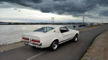 @1967 Shelby GT350 - 3