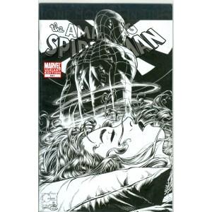 Amazing Spider-Man 641 Variant