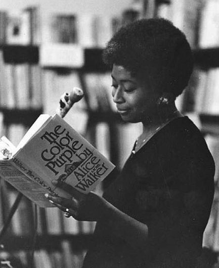 alice walker book recommendations
