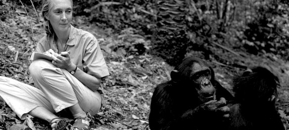 jane goodall book recommendations