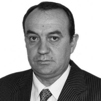 qamil_kolloni_opinion