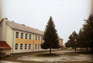 shkolla bresane