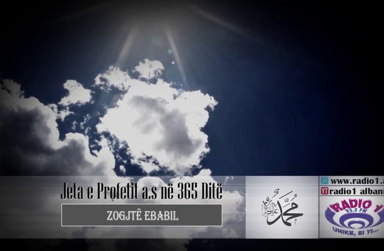 Profeti ne 365 dite 04   Zogjte Ebabil