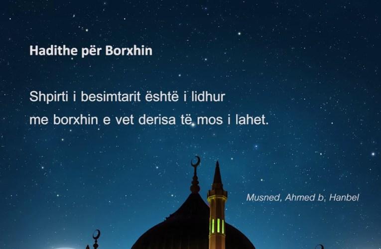 Borxhi 675