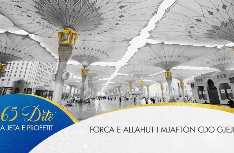 Profeti ne 365 dite  – 095 Forca e Allahut i mjafton cdo gjeje