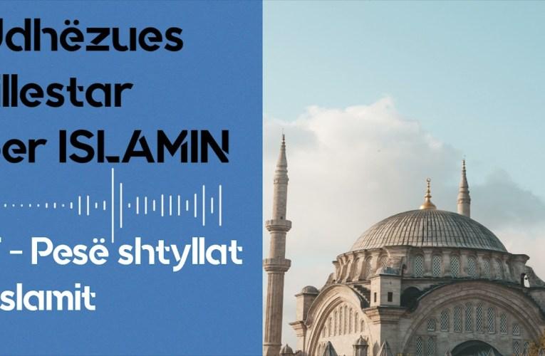 5 Shtyllat e Islamit – Udhezues fillestar per Islamin