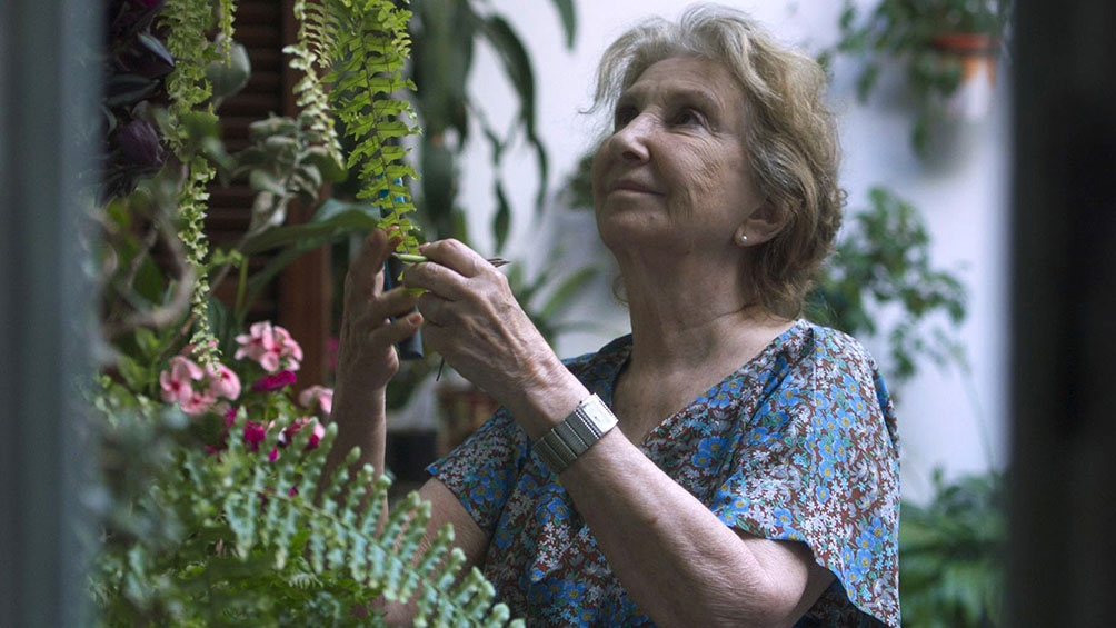 Norma Aleandro personifica a una sobreviviente del genocidio.