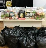 Polícia Civil entrega cestas básicas para famílias...
