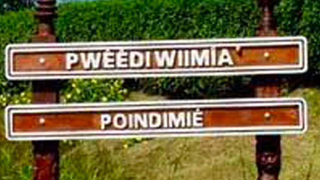 Poindimié