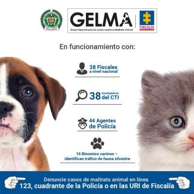 Desde hoy, 12 de diciembre de 2019, estará en funcionamiento el Grupo Especial para la Lucha Contra el Maltrato Animal de la Fiscalía General de la Nación de Colombia